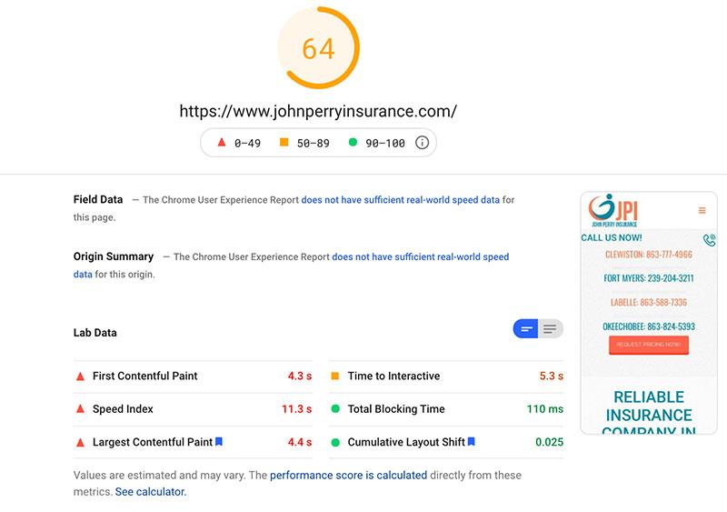 Page Speed Insight Score